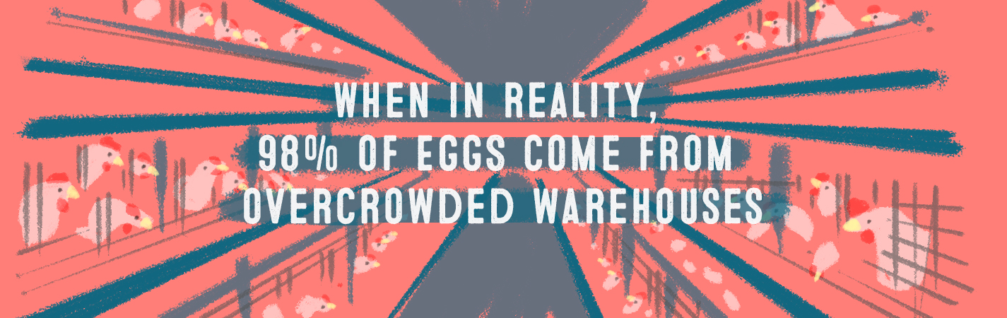 WHEN IN REALITY, 98% OF EGGS COME FROM OVERCROWDED WAREHOUSES.