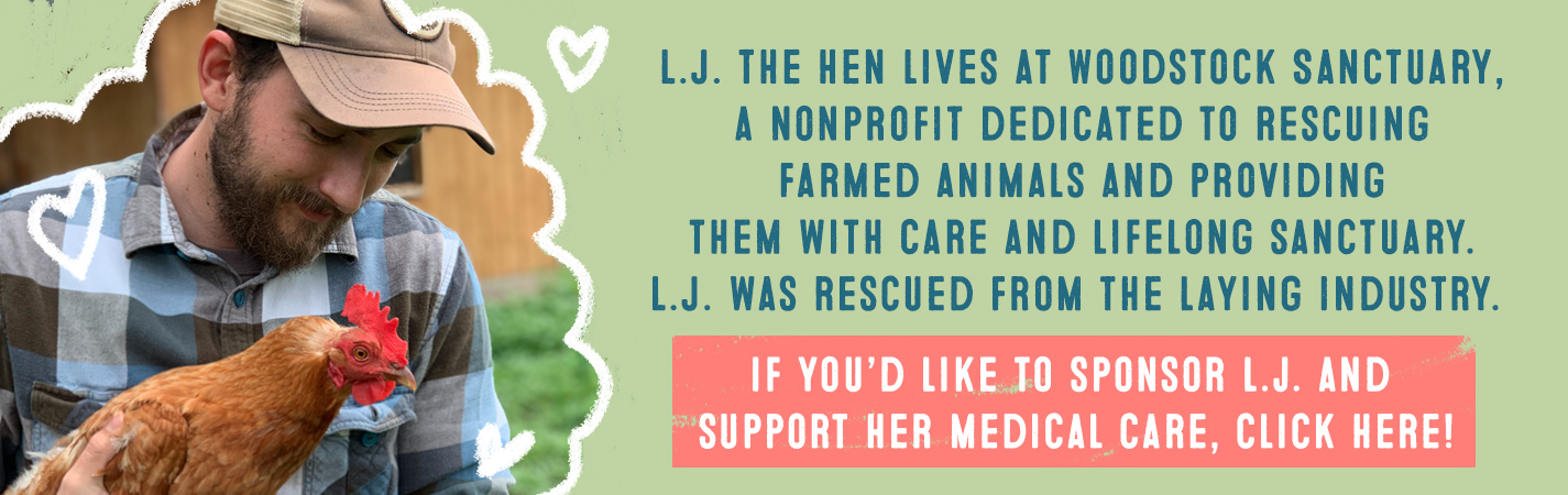 L.J THE HEN LIVES AT WOODSTOCK SANCTUARY, A NONPROFIT DEDICATED TO RESCUING FARMED ANIMALS AND PROVIDING THEM WITH CARE AND LIFELONG SANCTUARY. HAPPY WAS RESCUED FROM THR LAYING INDUSTRY. IF YOU'D LIKE TO SPONSOR HAPPY TO SUPPORT HER MEDICAL CARE, CLICK HERE.